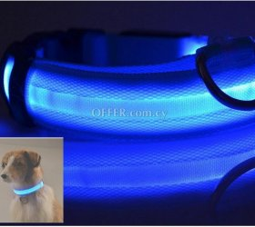 Glow in the dark led pet dog collar for night safety