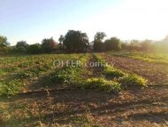 Residential Field in Polemi Village - Paphos, Cyprus