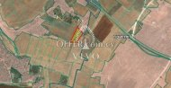 AGRICULTURAL PLOT 3675 SQM IN AVGOROU, AMMOCHOSTOS