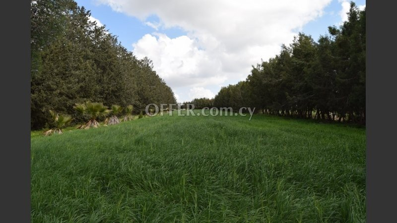 Residential land for sale in Geroskipou - 2