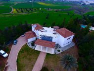 Magnificent House in Latsia for Rent