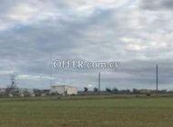 Agricultural Land in Psimolofou for Sale - 2