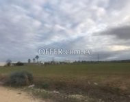 Agricultural Land in Psimolofou for Sale - 3