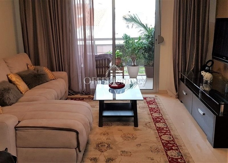 LUXURY COSY 2 BEDROOM APARTMENT FULLY FURNISHED IN P. GERMASOGIAS - 2