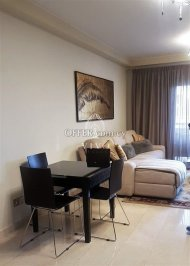 LUXURY COSY 2 BEDROOM APARTMENT FULLY FURNISHED IN P. GERMASOGIAS - 6